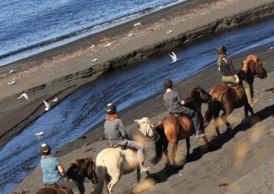 seaside extended6